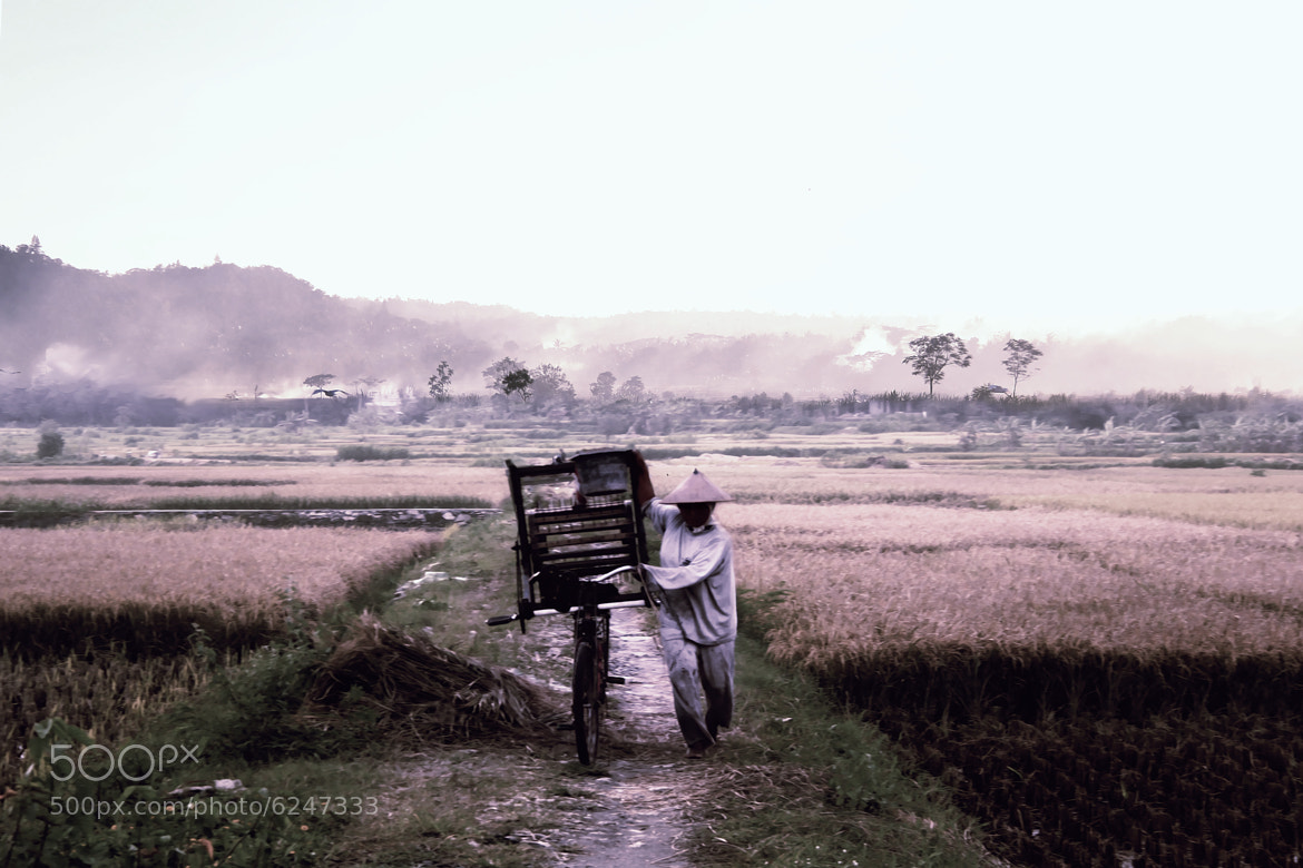 Photograph The power of farmers -3 by 3 Joko on 500px