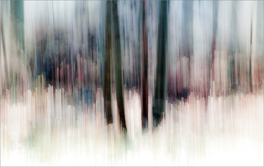 Photograph could be wood by Gilbert Claes on 500px
