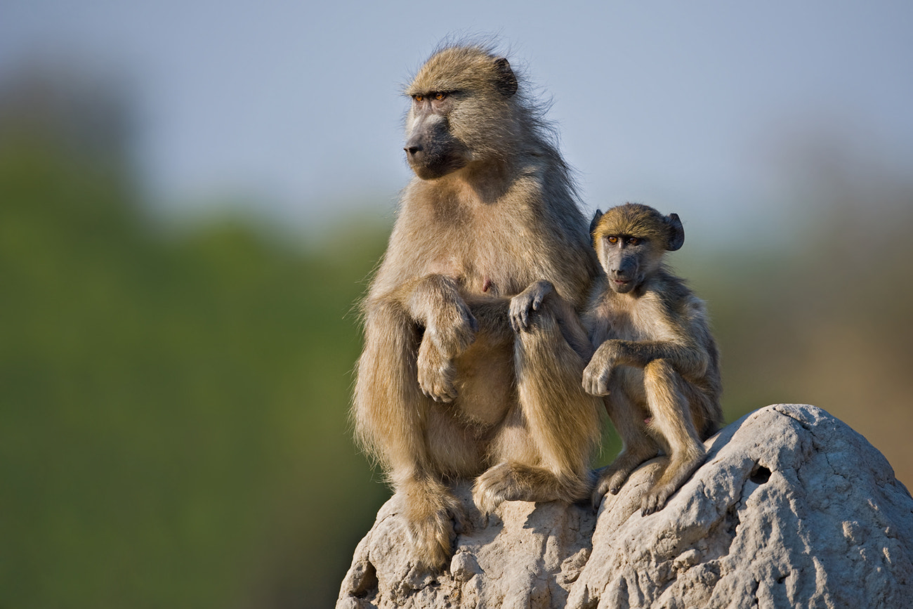 Photograph Mother and son by Marc MOL on 500px