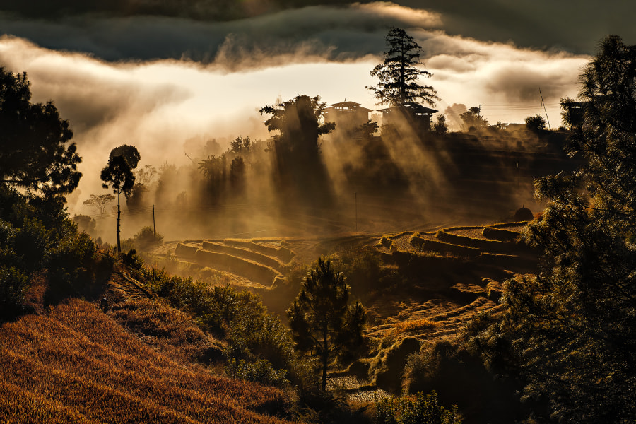 Morning rays in Bhutan by Marcellian Tan on 500px.com
