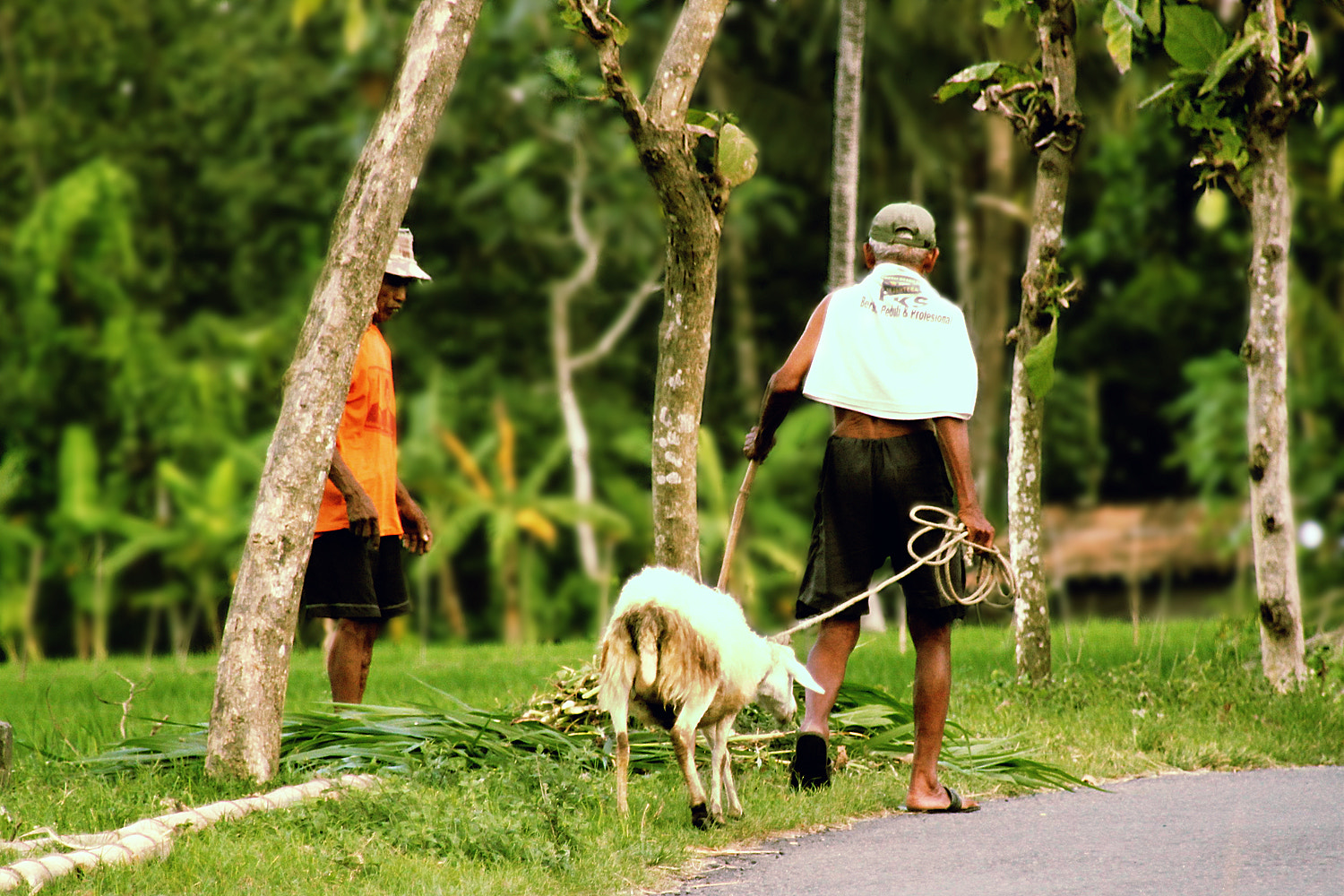Photograph two old shepherds by 3 Joko on 500px