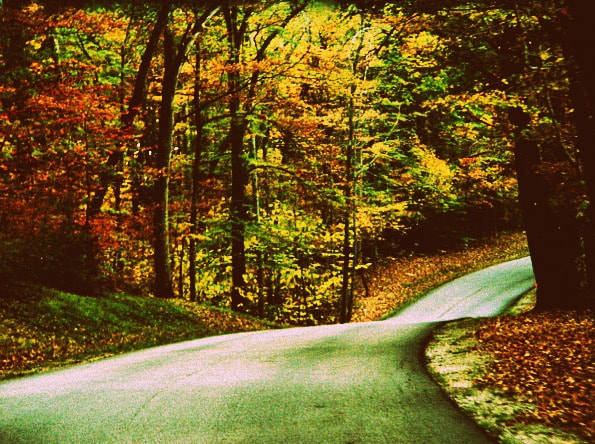Photograph Indiana Autumn by Gabrielle  Cullins on 500px