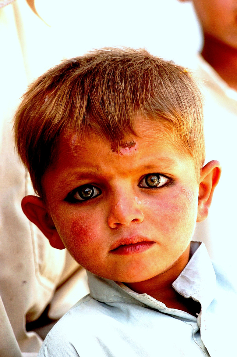 Photograph The Afghan Eyes by Tuncer Bahçivan on 500px