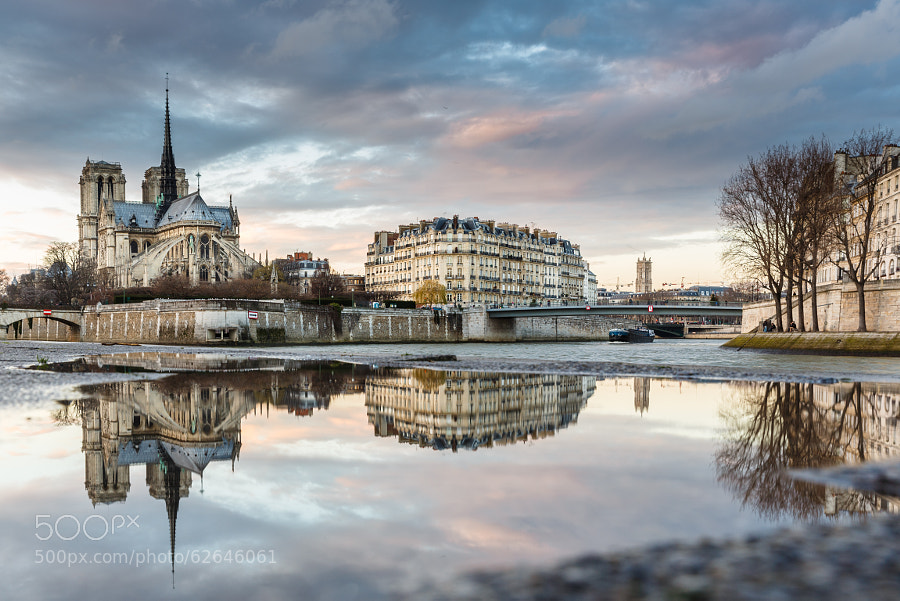 Photograph Puddle Mirror on Notre Dame de Paris by Loïc Lagarde on 500px