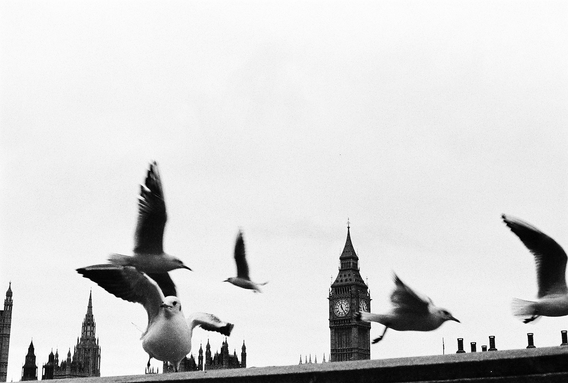 Photograph london by Pedro Lopes on 500px