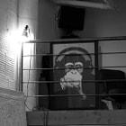 Shot inside a loft in Downtown, Los Angeles.