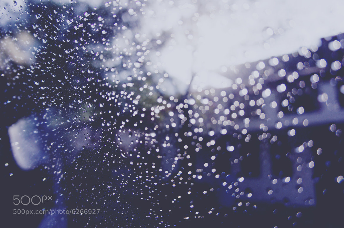 Photograph rainy day and sunlight by Michelle Lartigue on 500px