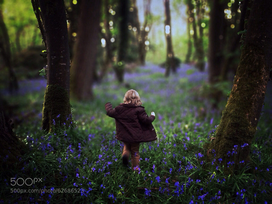 Photograph Tiptoeing Through The Bluebells by Paul Moore on 500px