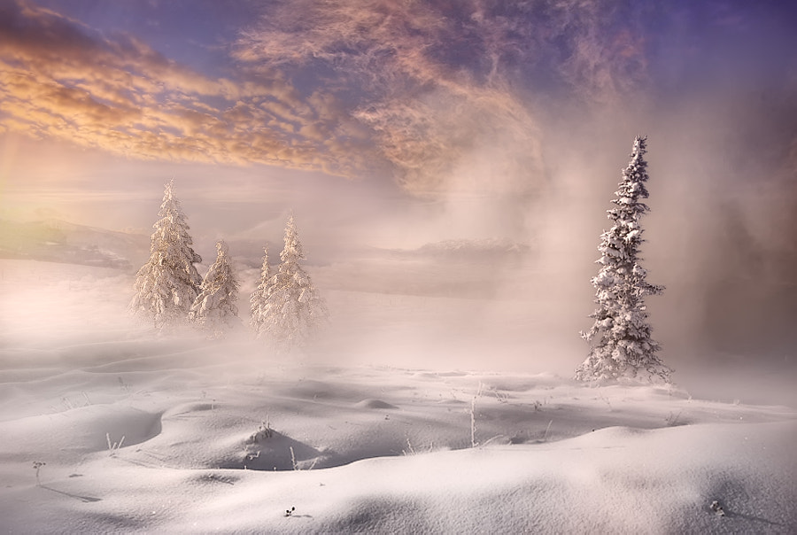 In the depth of winter by Maurizio Fecchio on 500px.com