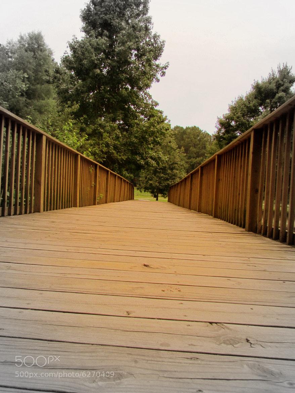 Photograph Wooden Bridge by Marina Rocha Ciavatta on 500px