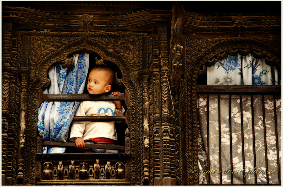 Toddler in a Window