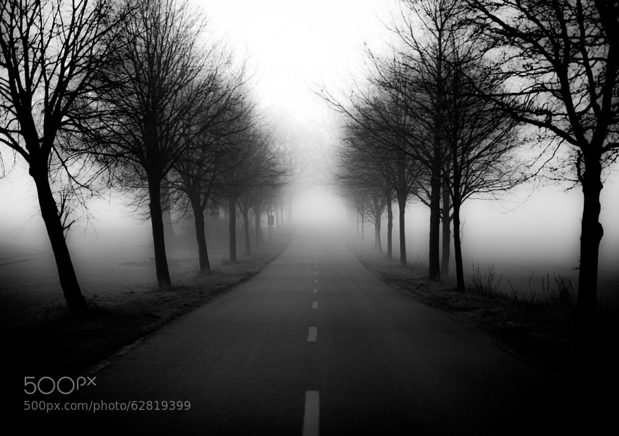 Photograph Misty Road by Dirk Siemer on 500px