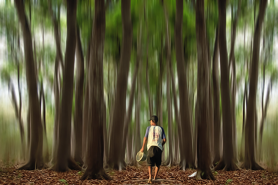Photograph Where I will Go  by 3 Joko on 500px