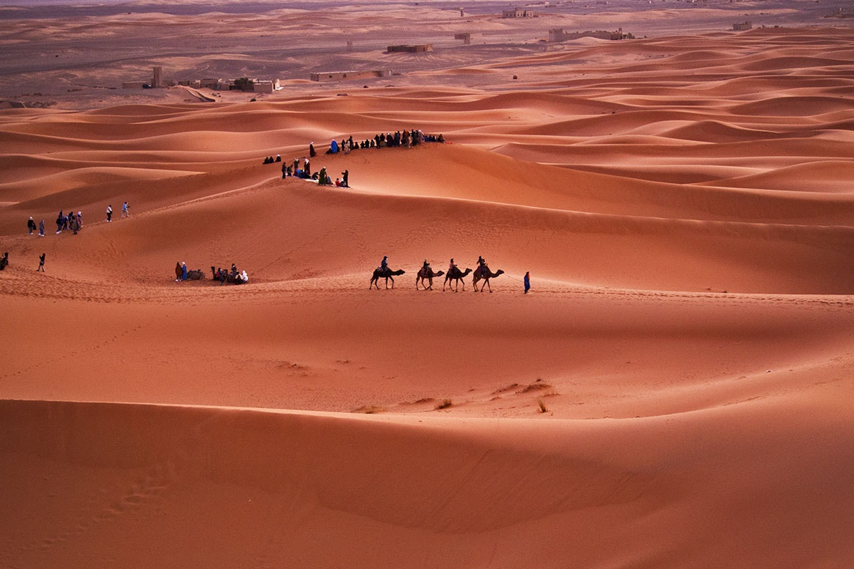 Photograph Sahara Desert by Orna Naor on 500px