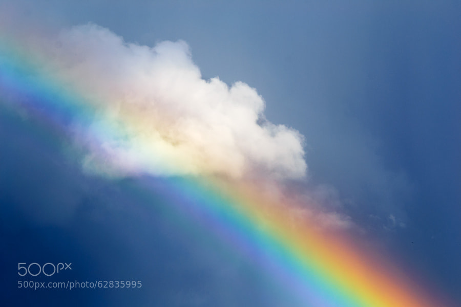 Rainbow by IvanPertsev