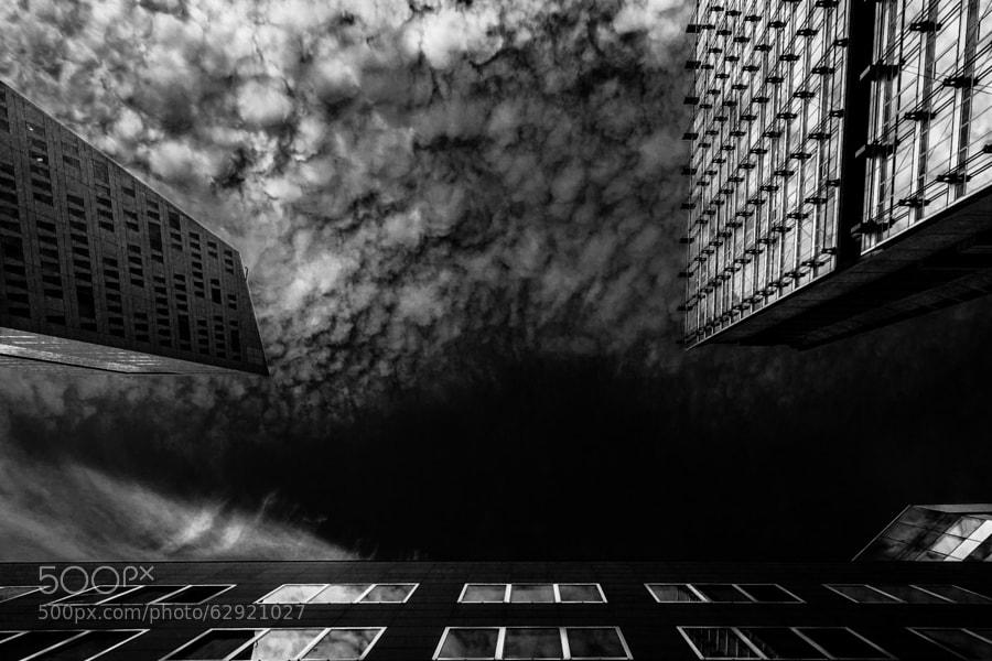 Photograph Vertigo 2 by David Gorriez on 500px