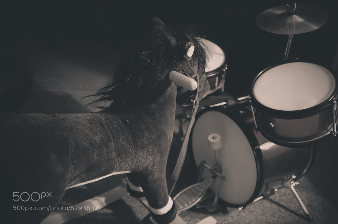 Photograph Rockin' Horse (Day 24) by Jesse Leite on 500px