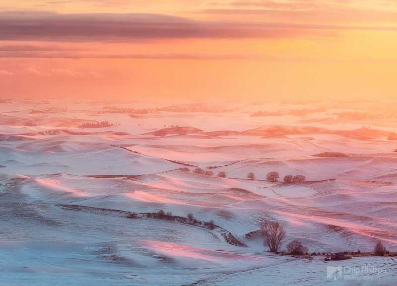 Photograph Winter Glow Palouse by Chip Phillips on 500px