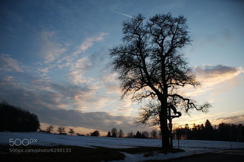Photograph sundown by Christine Stecyna on 500px