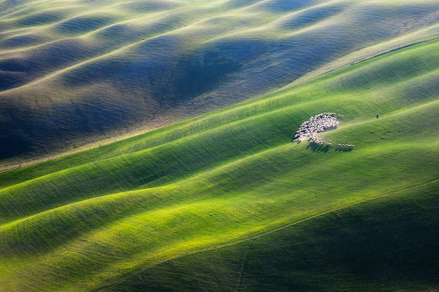 Photograph 300 by Marcin Sobas on 500px