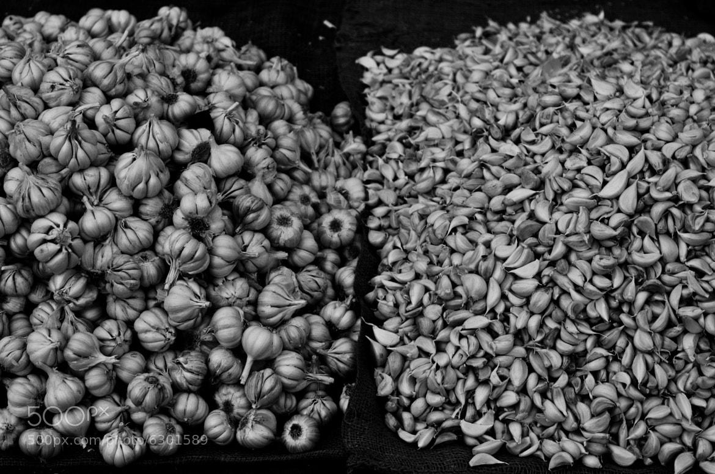 Photograph Garlic by Felix Weizman on 500px