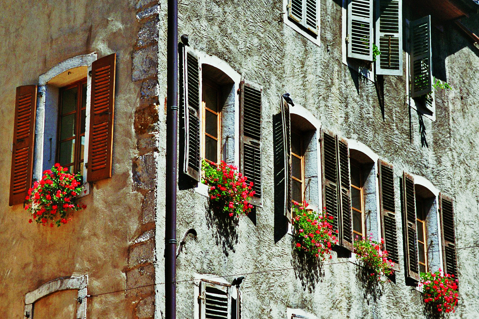Photograph Windows by Sandra Laroche on 500px
