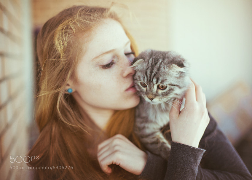 Photograph Mrrr by Daniil Kontorovich on 500px