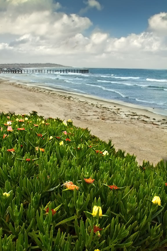 Photograph Crystal Pier by Brian Frank Snapshots and HDR on 500px