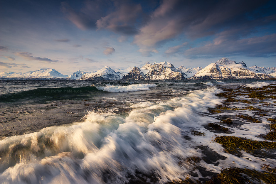 Photograph Light in the North by Stefan Hefele on 500px