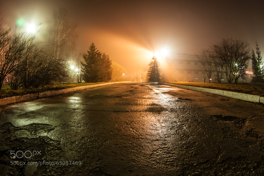 Photograph Foggy night by Gordey Doronin on 500px
