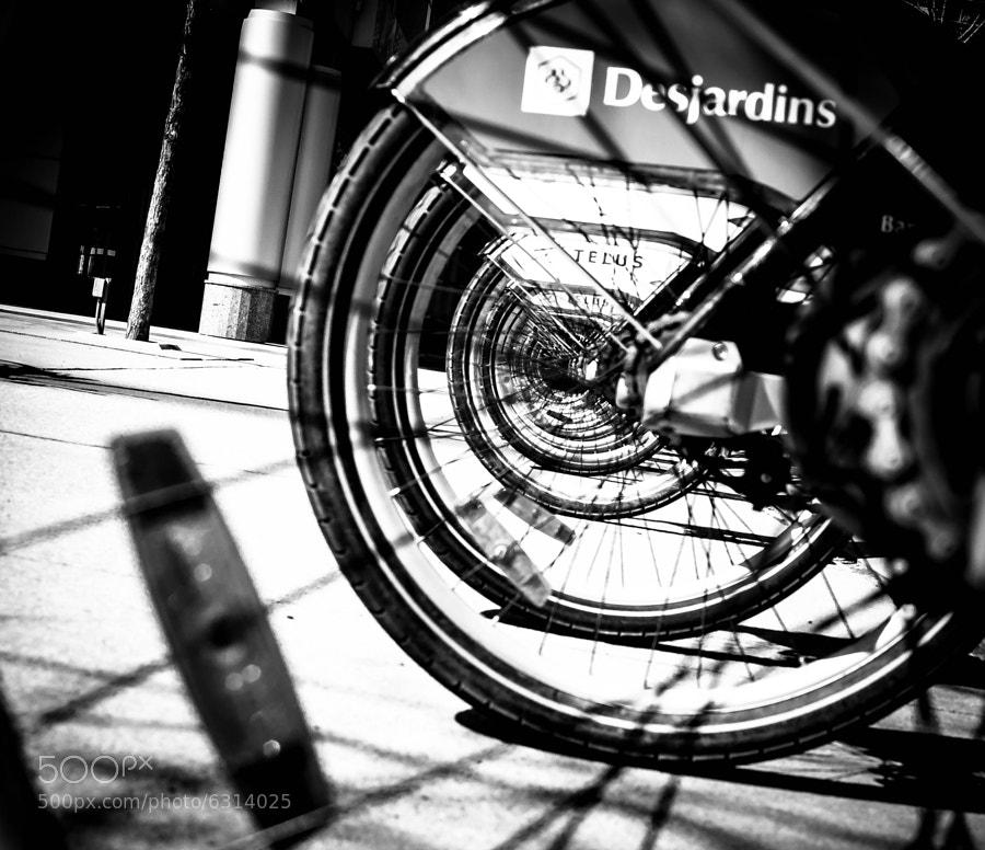 Rental bikes, Harbourfront, Toronto
