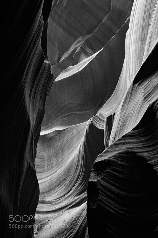 Photograph Catching light by Rick Schump on 500px