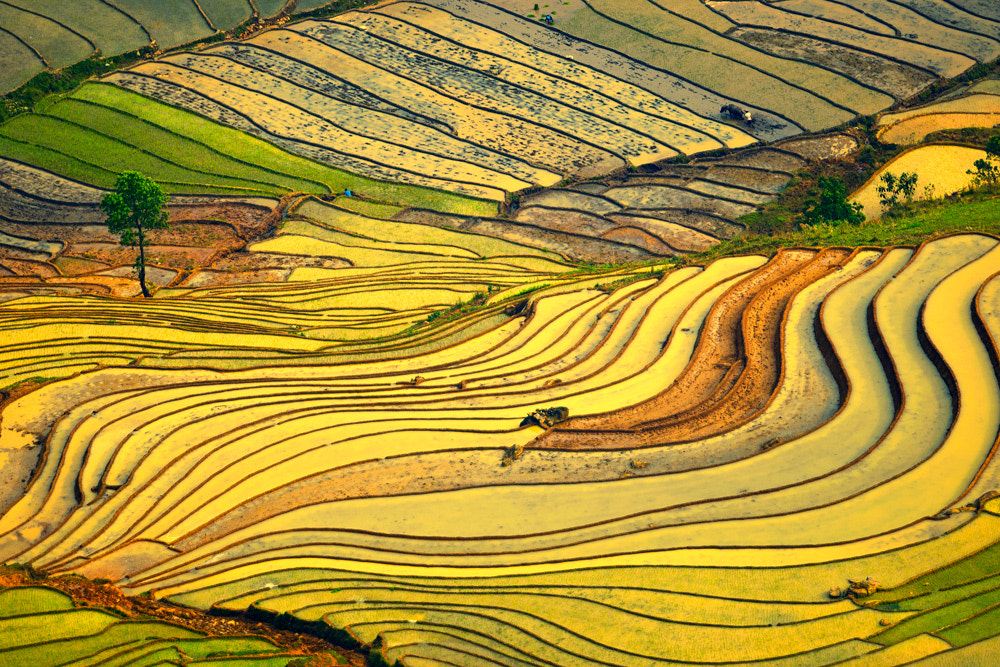 Photograph Spring in Y ti by Hai Thinh on 500px