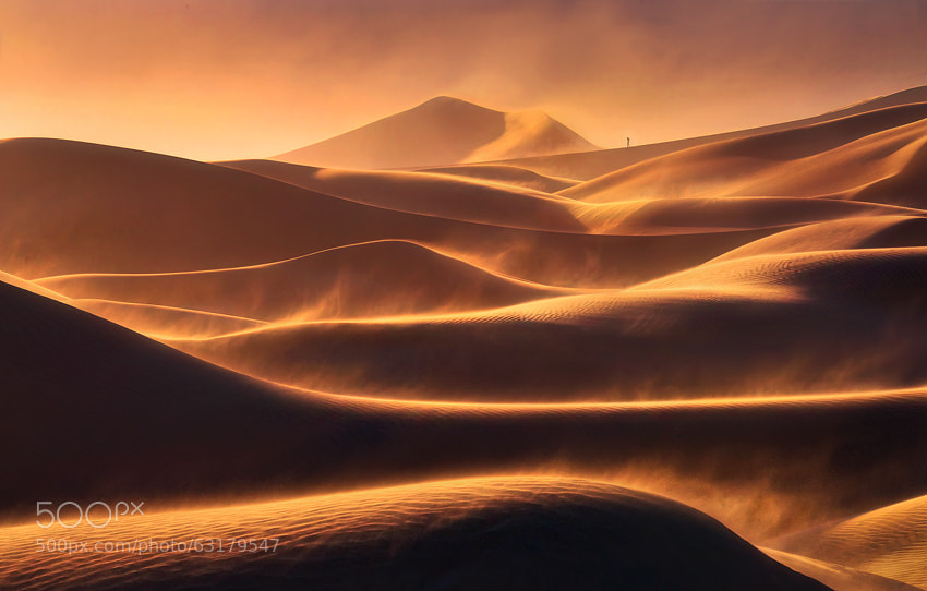 Walking the Flames by Marc  Adamus