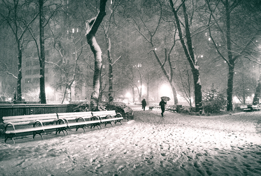 Photograph New York City - Winter Night in Madison Square Park by Vivienne Gucwa on 500px