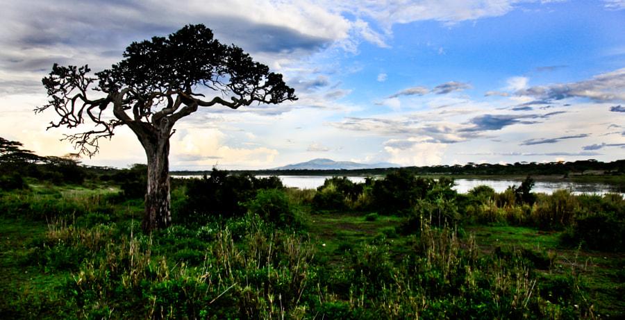Lake Masek