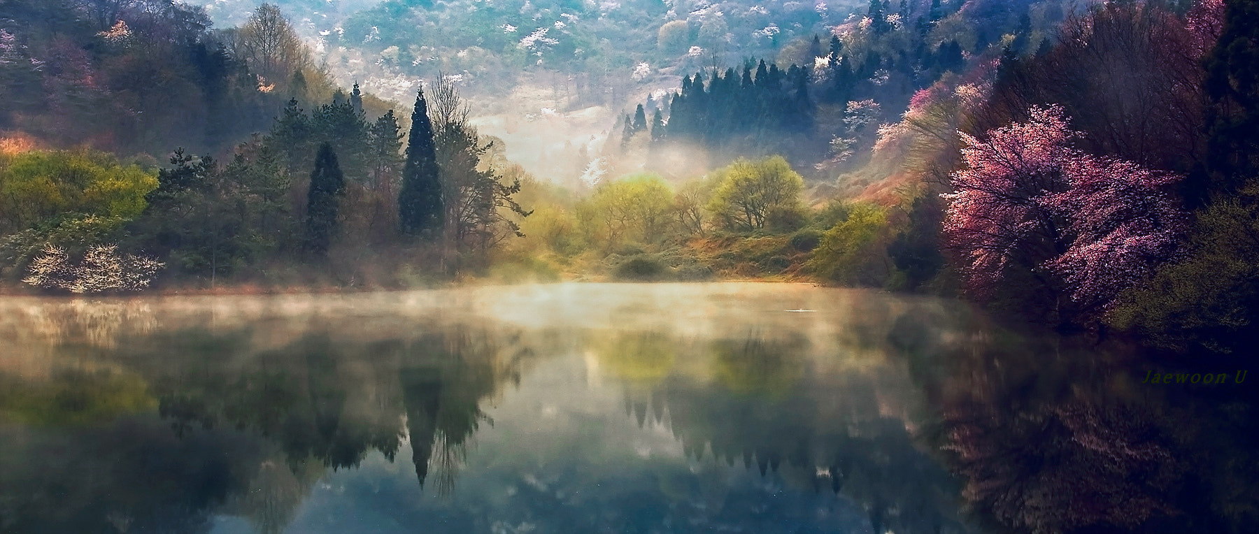 Photograph Memory of spring by Jaewoon U on 500px