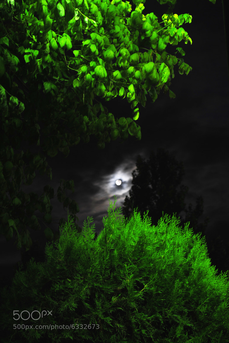 Photograph green moon,,,, by Harry Varsamis on 500px