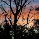 Sundown in Tarzana, California as the sky lights up.