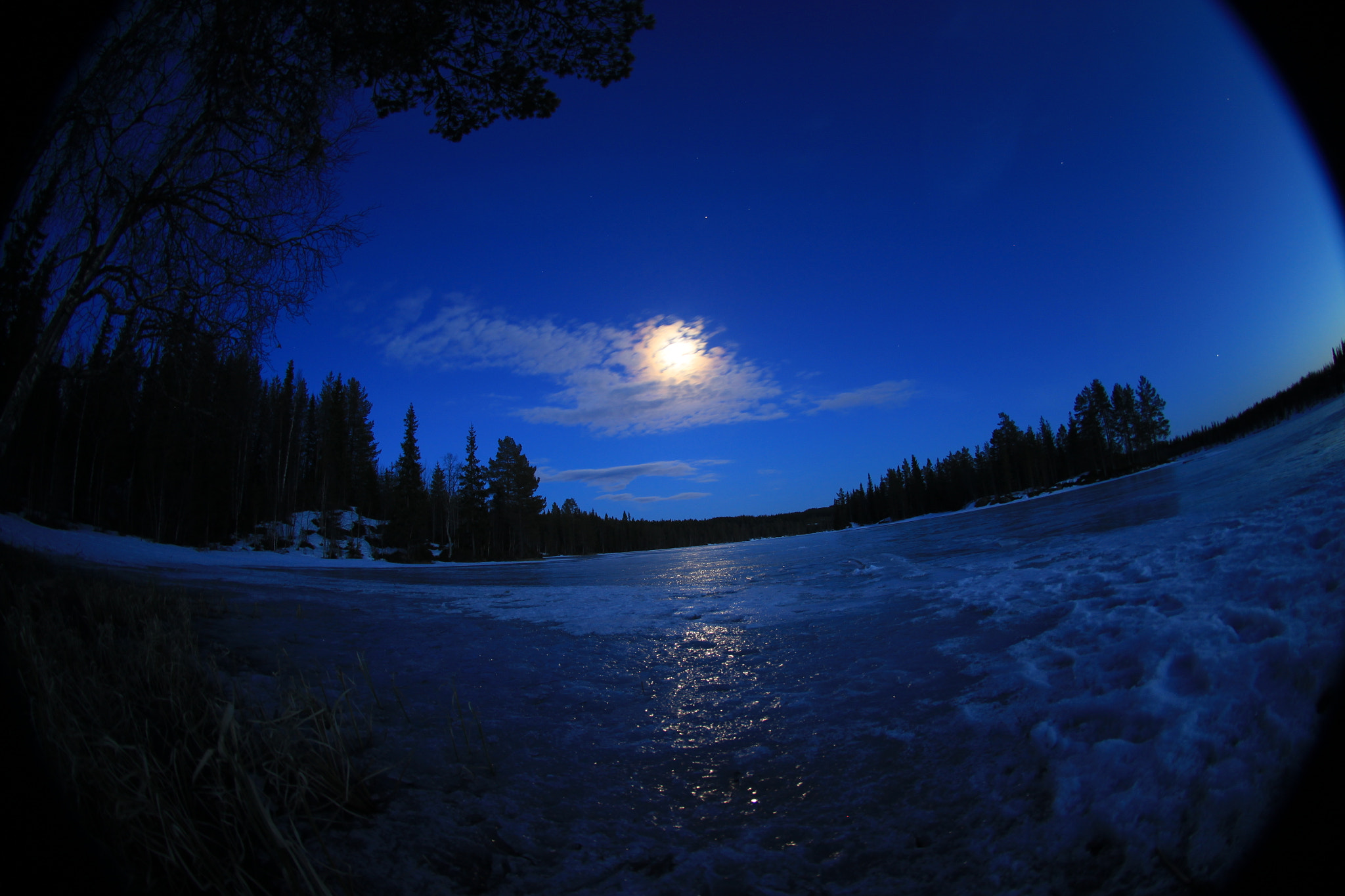 Photograph Blue Moon by Timothy  Boocock on 500px