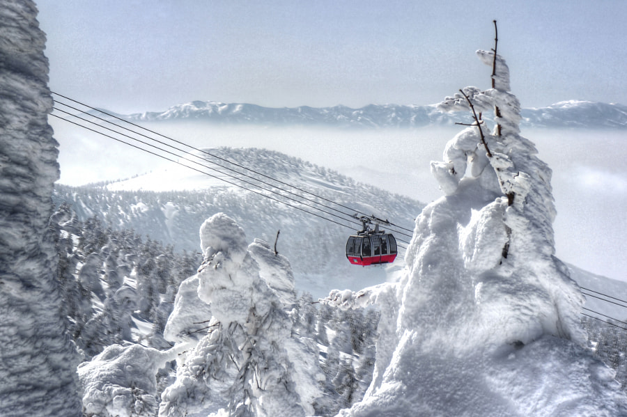 Reasons to visit Japan in the winter: Mt. Zao Snow Monsters (Photo: Jussi Lyons on 500px.com)