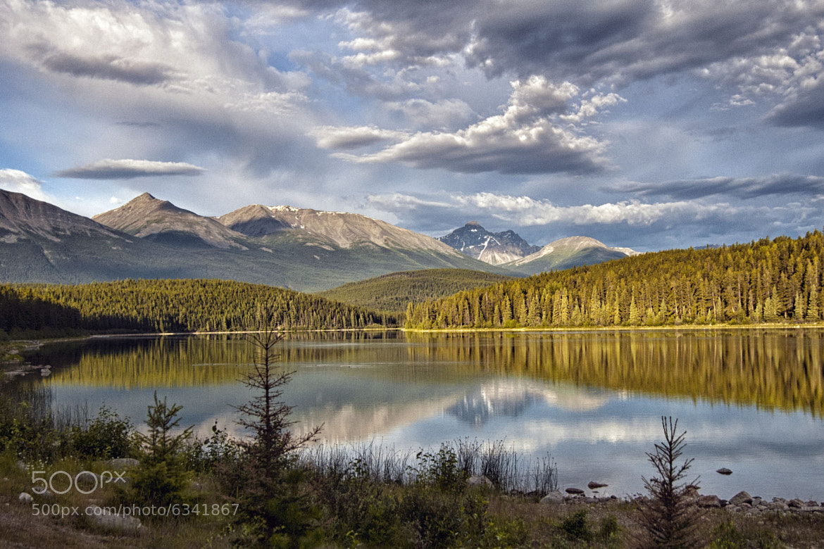 Photograph When I think of Jasper by Greg McLemore on 500px