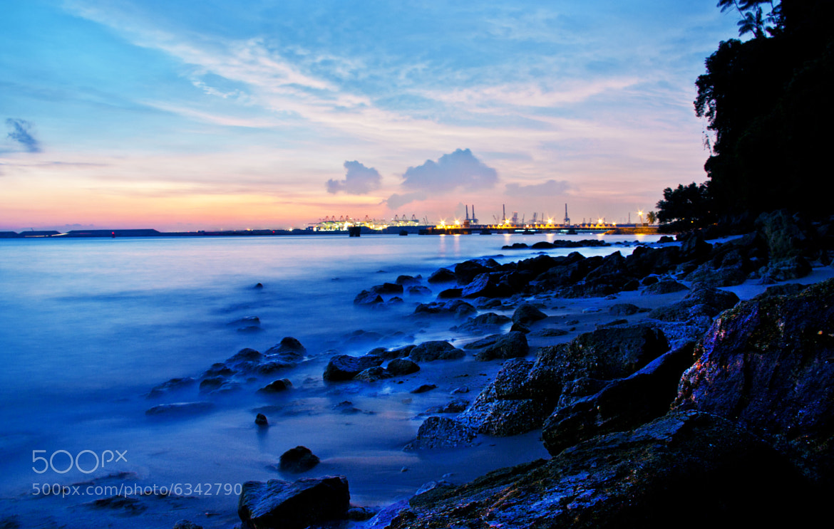 Photograph Blue hour at Labrador park (http://www.facebook.com/DragonflysPhotography) by Manu Ignatius on 500px