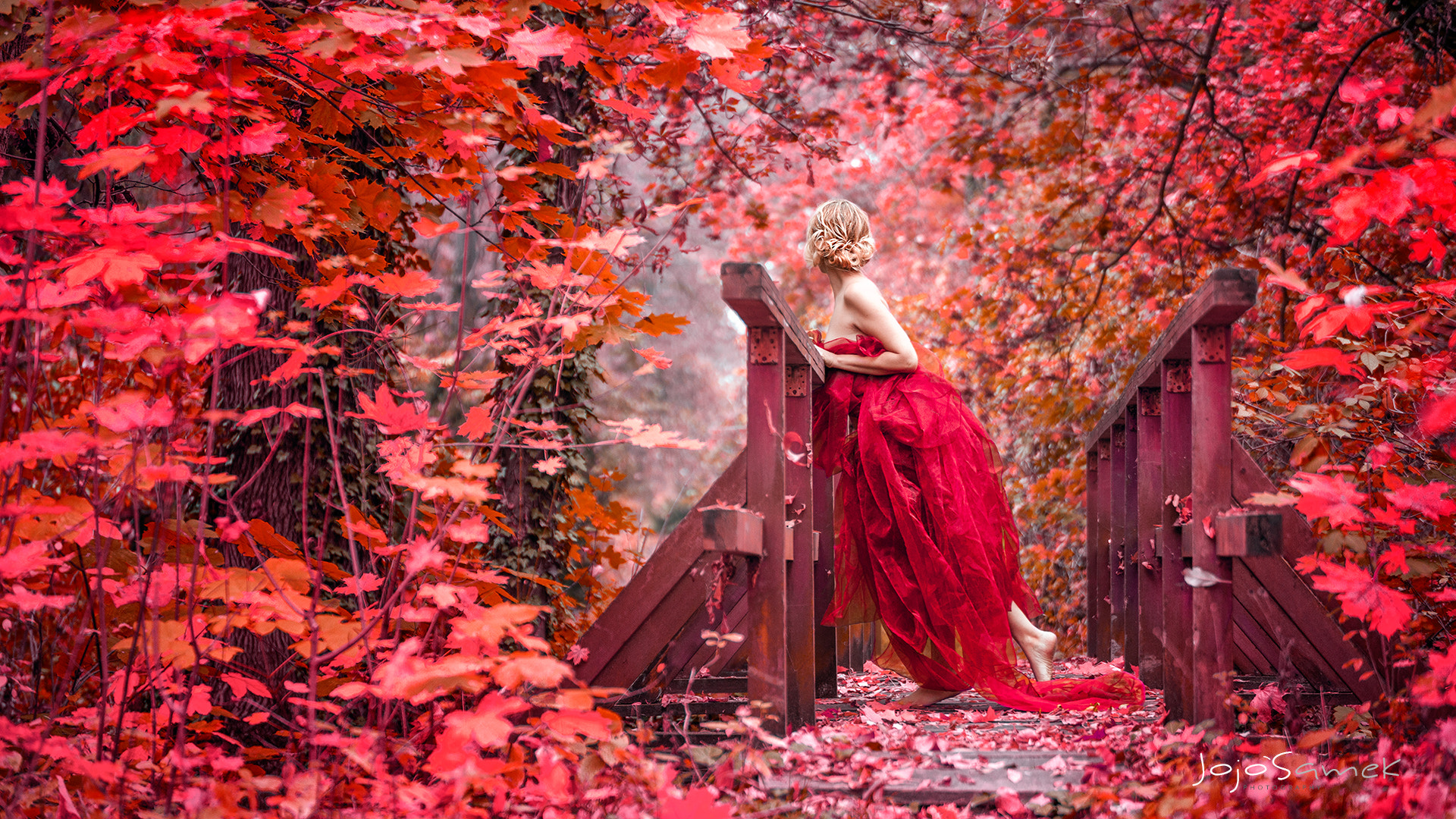 Photograph 50 Shades of Red by Jojo Samek on 500px