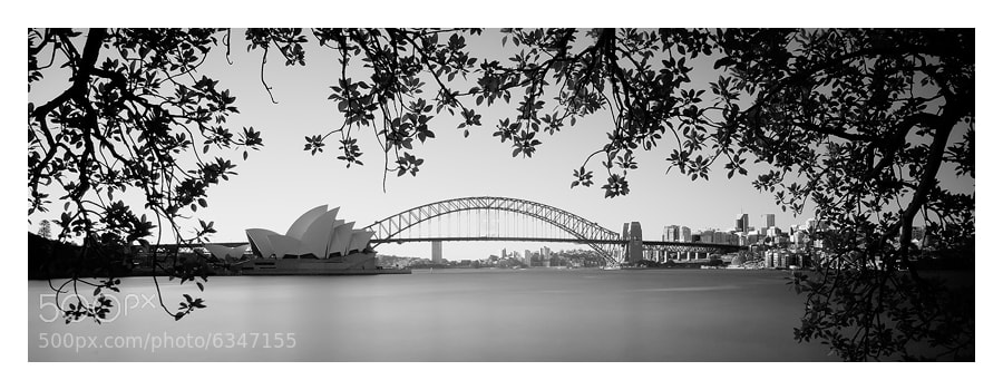 Photograph Sydney, New South Wales, Australia by Russell Pike on 500px