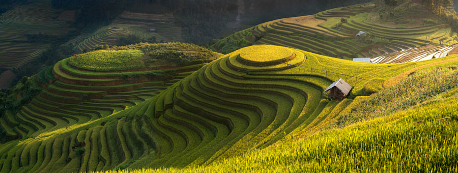 Amazing Rice terraces by sarawut Intarob on 500px.com