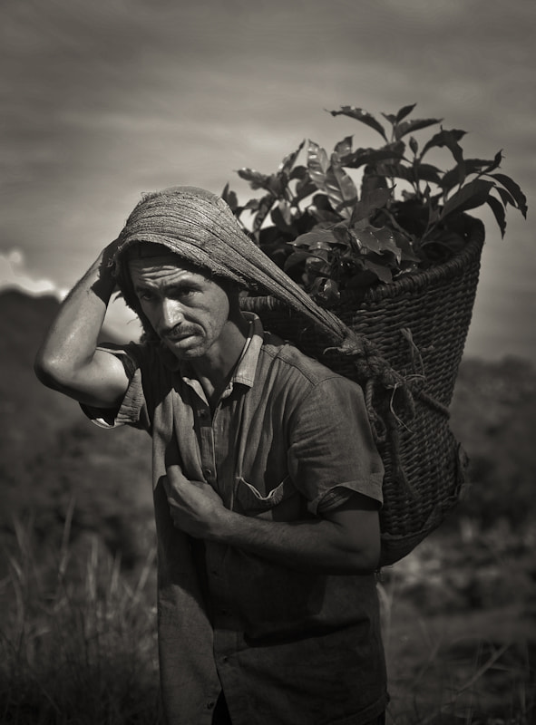 Photograph Coffee Farmer by michael thompson on 500px