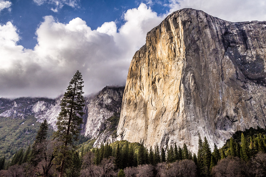 Photograph El Capitan, Yosemite, CA by Alex Manelis on 500px