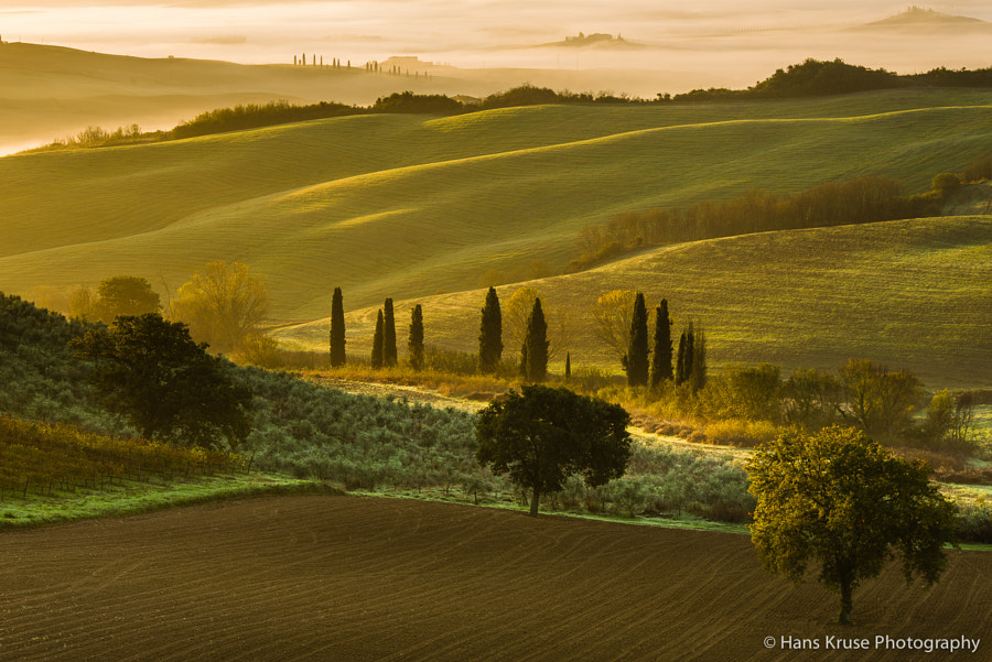 This photo was shot in the days before the Tuscany November 2013 photo workshop. There is a new photo workshop in Tuscany November 2014 with seats available.
