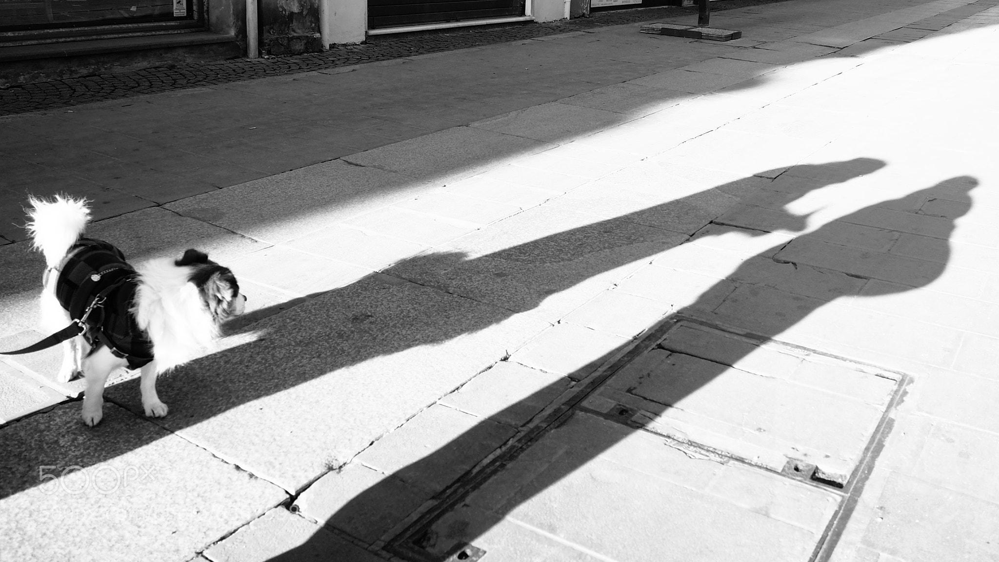 Photograph Listen! by Stella Trasforini on 500px